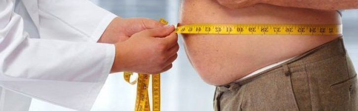 SlimCarb: O produto utilizado para tratamento da obesidade